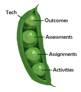 Graphic of a peapod showing alignment among course outcomes, assessments, assignments and activities